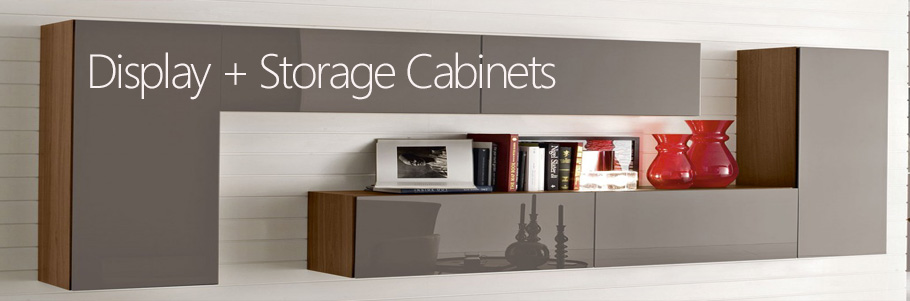 Display + Storage Cabinets