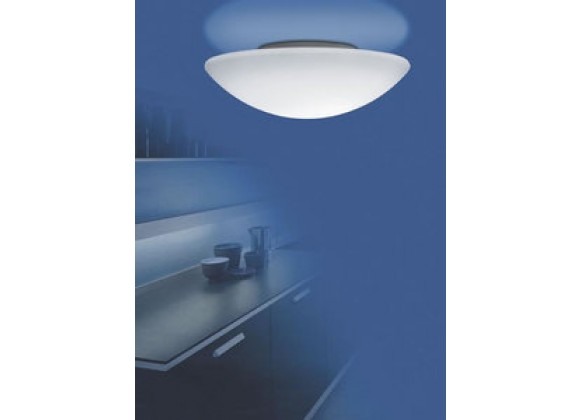 Illuminating Experiences Meltemi 12 inch Fluorescent Wall or Ceiling Light - M10129