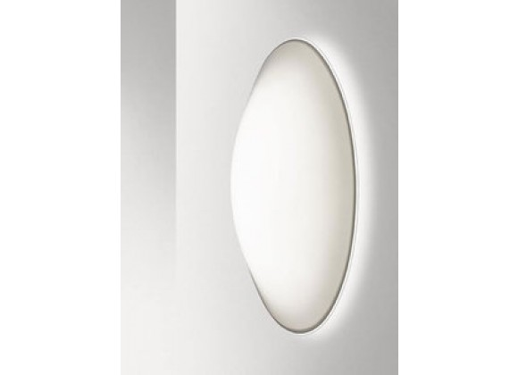 Illuminating Experiences Nemo Series Oval Wall and Ceiling Light