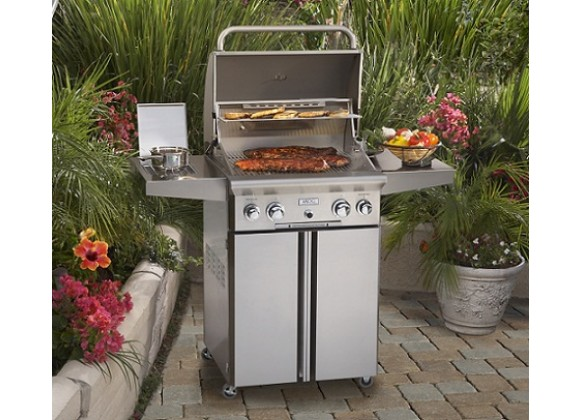 "American Outdoor Grill 24"" Portable Gas Grill"