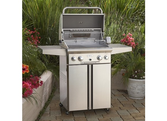 "American Outdoor Grill 30"" Portable Gas Grill"