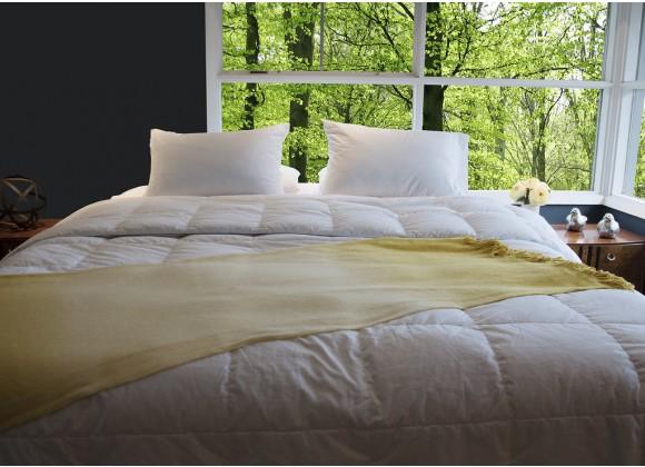 All Season Silver Antimicrobial White Goose Down Alternative Comforter - Queen