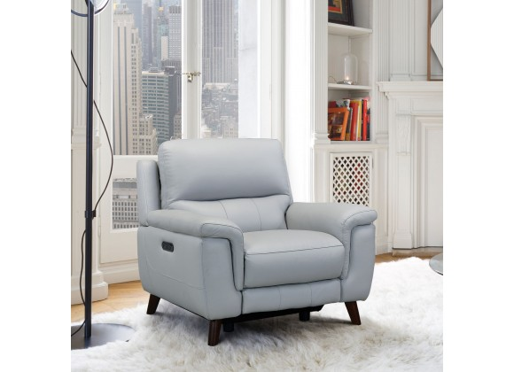 Lizette Contemporary Chair in Dark Brown Wood Finish and Dove Grey Genuine Leather - Lifestyle