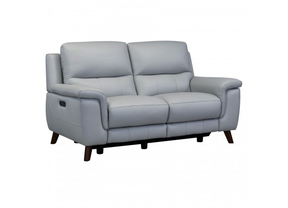 Lizette Contemporary Loveseat in Dark Brown Wood Finish and Dove Grey Genuine Leather - Angled
