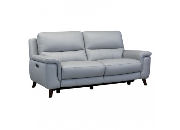 Lizette Contemporary Sofa in Dark Brown Wood Finish and Dove Grey Genuine Leather - Angled