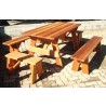 Picnic Table - Set with Picnic Bench