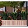 Best Redwood Solid Planter with Plant